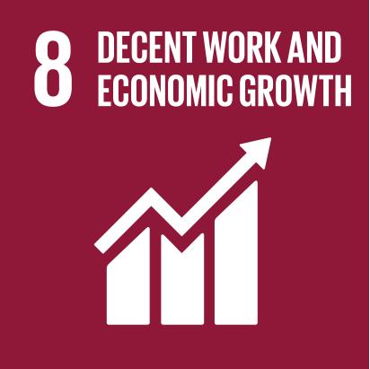 SDG Goal 8